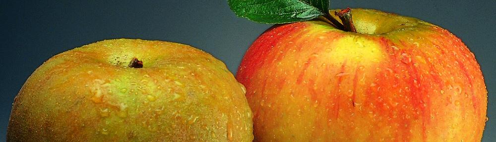 header-pommes